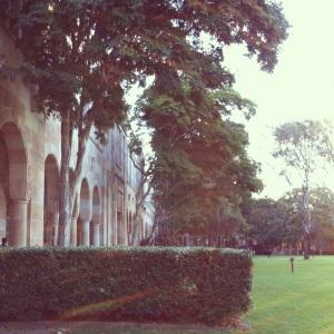 University grounds