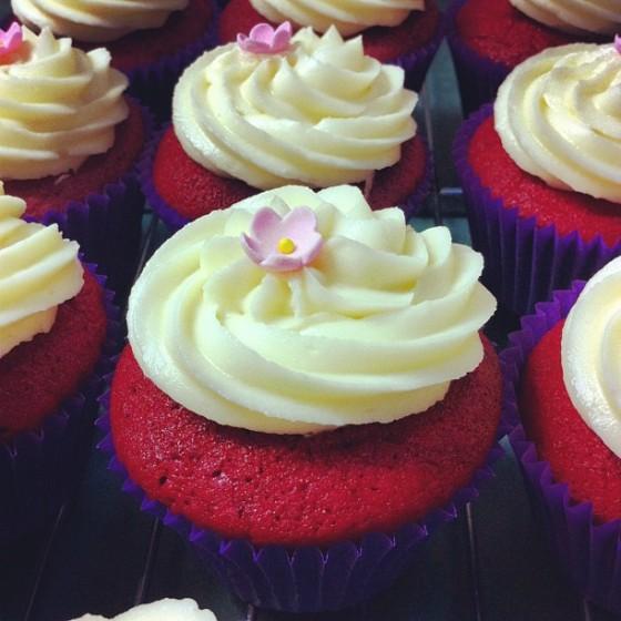 Kristy's cupcakes