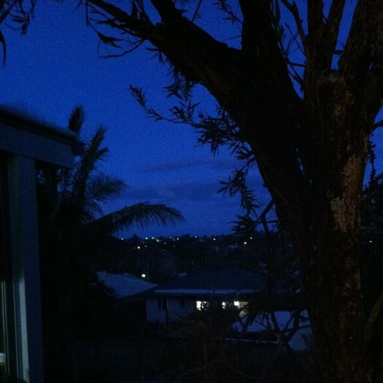 Nights in Manly