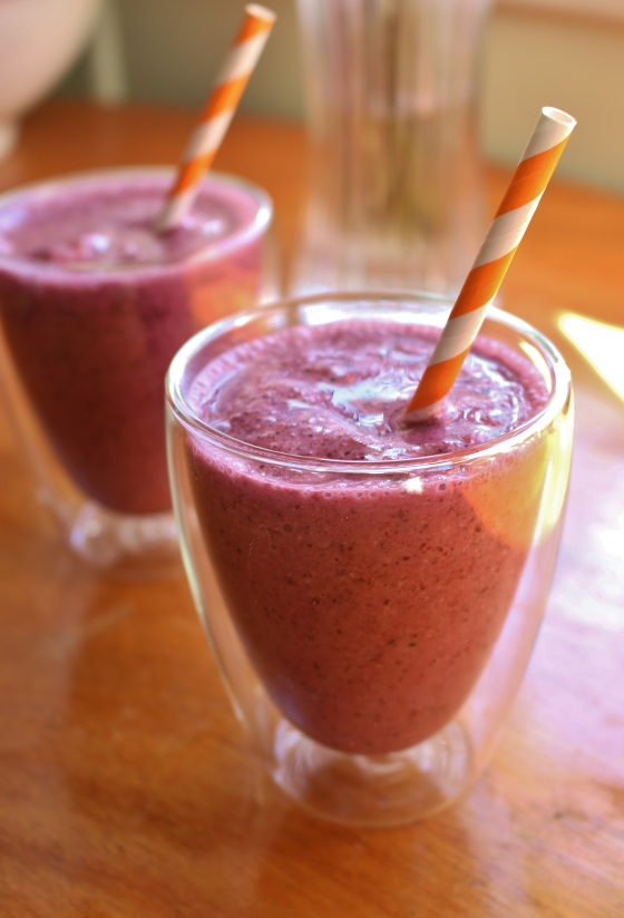 Blueberry and Oat Smoothies | Gluten Free | Thoroughly Nourished Life