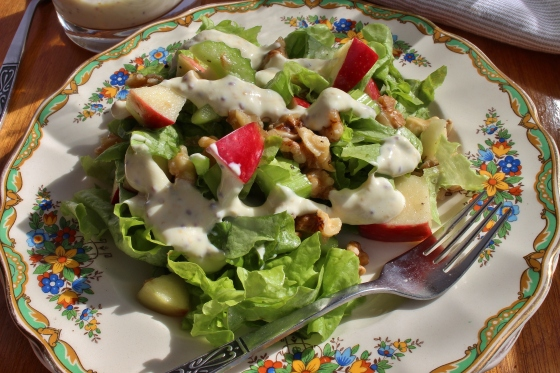 Apple Celery Walnut Salad 1