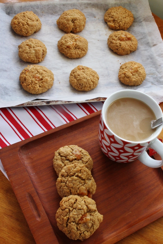 Apricot Coconut Cookies 1