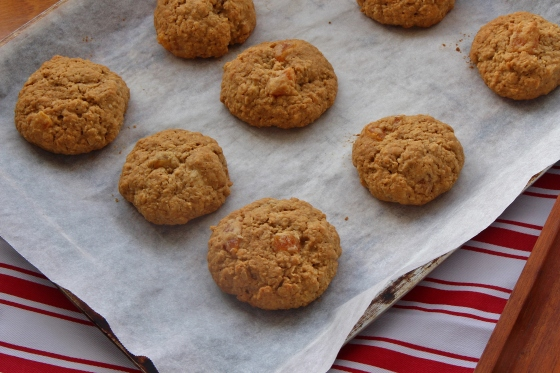 Apricot Coconut Cookies 3