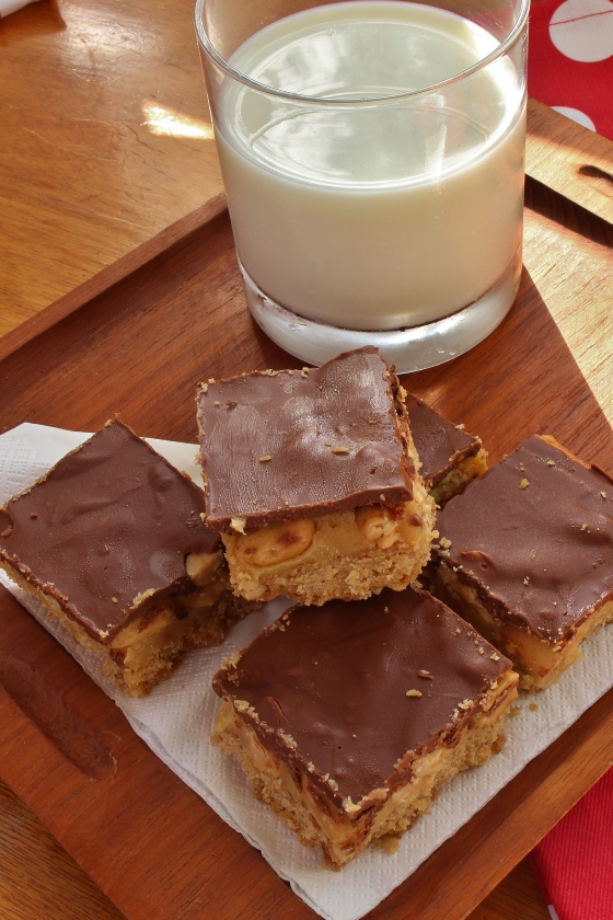 Salted Peanut Caramel Chocolate Slice 3