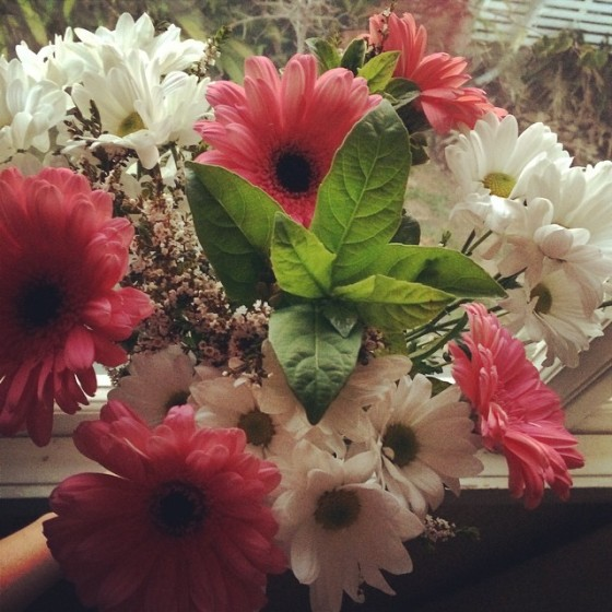 flowers from my baby
