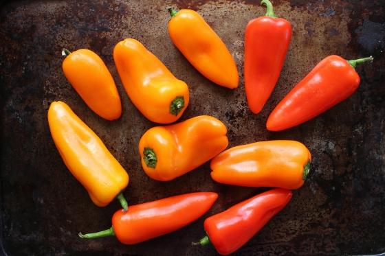 Paprika Corn Stuffed Mini Sweet Peppers | Vegetarian | Gluten Free | Thoroughly Nourished Life