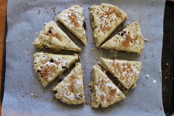 Cranberry Orange Scones | Gluten Free | Thoroughly Nourished Life