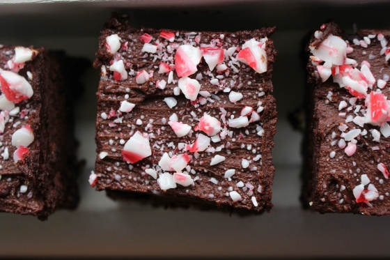 Frosted Peppermint Brownies | Gluten Free | Thoroughly Nourished Life