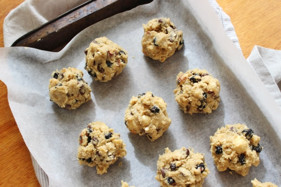 Hazelnut, Dried Blueberry, and Chocolate Chip Quinoa Cookies | Gluten Free | Thoroughly Nourished Life