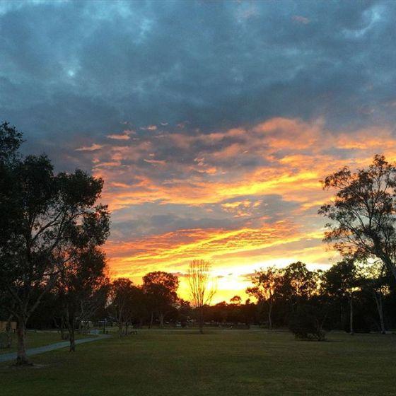 wk 35 sunrise