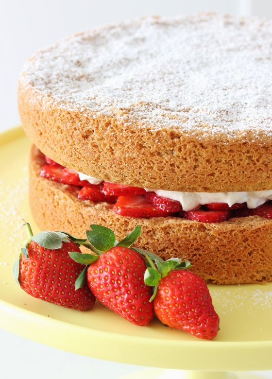 Brown Sugar Sponge with Berries and Whipped Cream | Gluten Free | Thoroughly Nourished Life