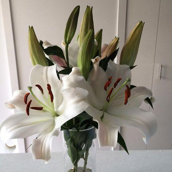 wk 36 flowers