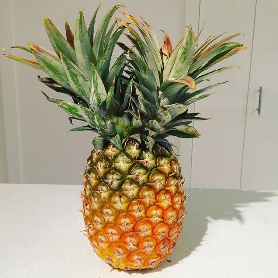 wk 36 pineapple